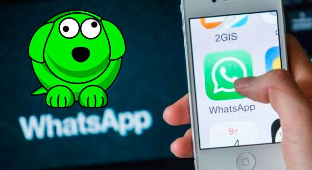 instalar whatsappdog